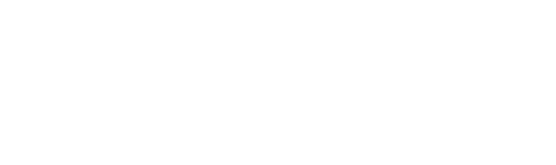 secur-itech-logo-white-sub-white.png